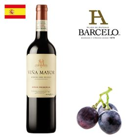 Viña Mayor Gran Reserva 2009 750ml
